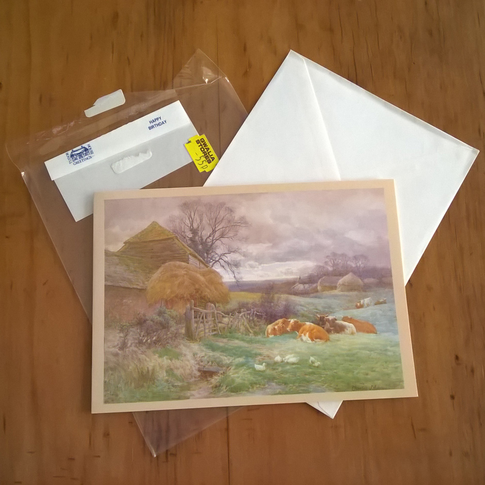Vintage Nineties Birthday Card And Envelope For Sale Tudor House Greetings